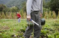 Italy, Valmorel, azienda agricola e B&B I boschi del Castagno (di Isabella Rinaldi e Eugenio Frigerio)