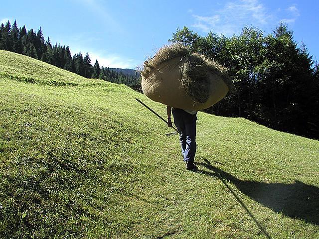 La Val Labfest 2014 Fondazione Dolomiti UNESCO