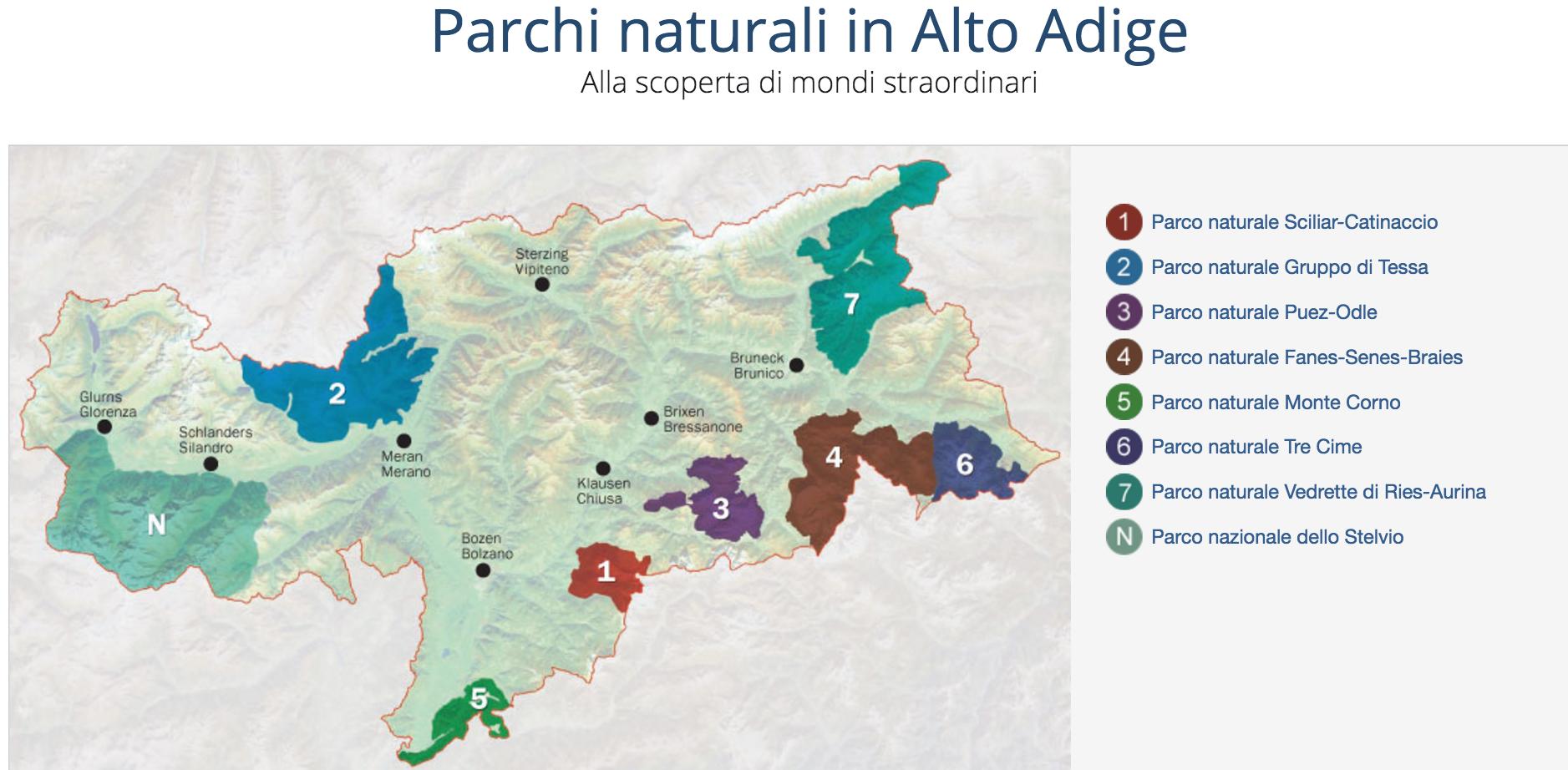 pachi_altoadige_nuovo_sito_web
