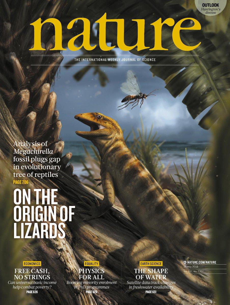 copertina_nature_dolomiti