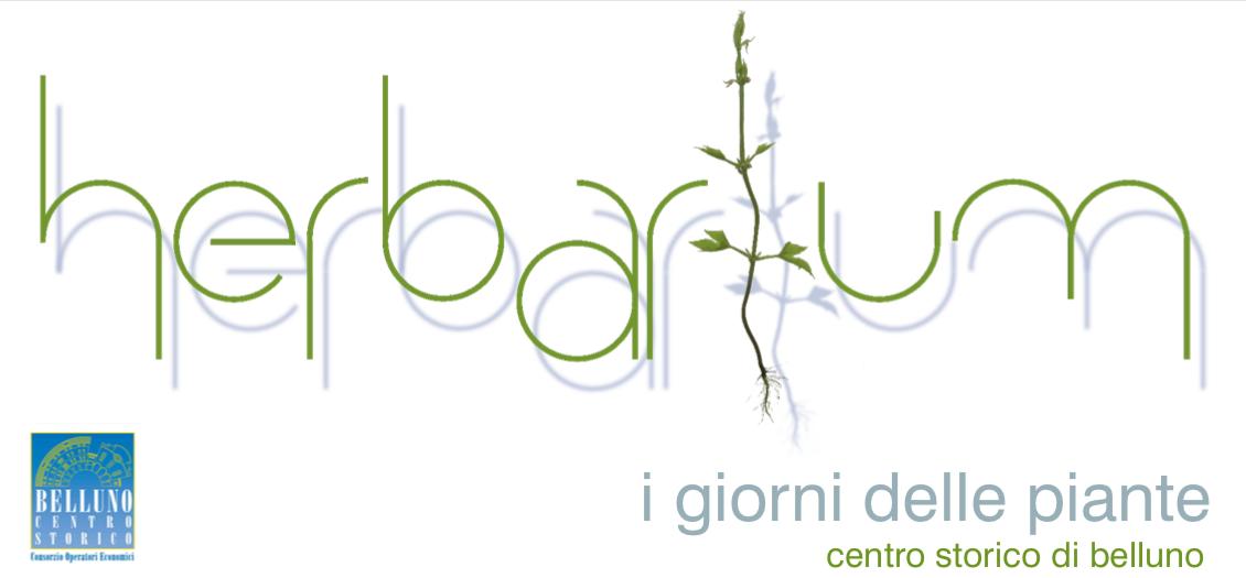 herbarium-belluno