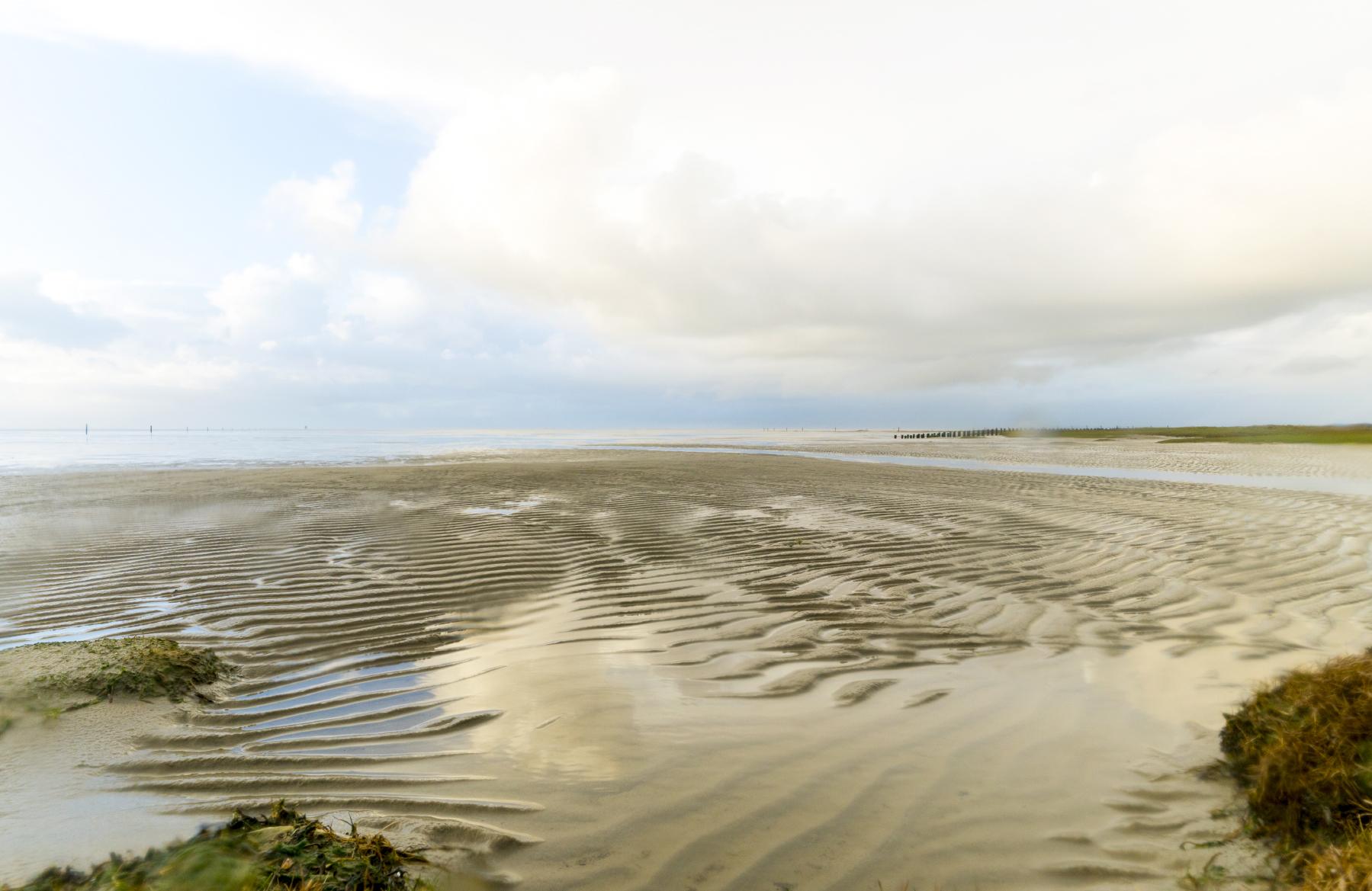 Wadden Sea georg tappeiner