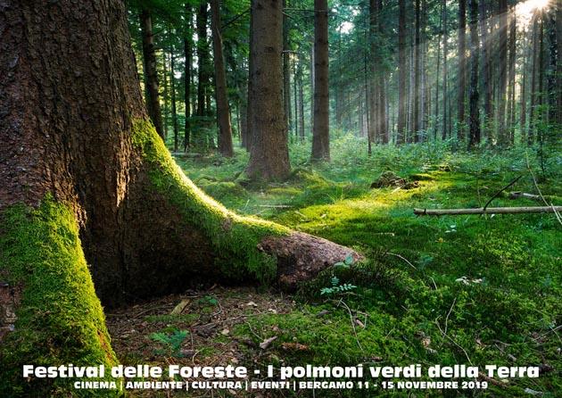 festival-delle-foreste